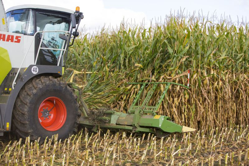 Krone releases maize header for other brands